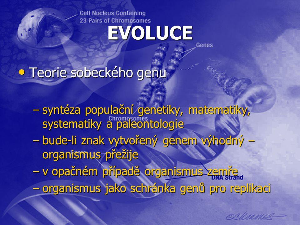 EVOLUCE Teorie sobeckého genu