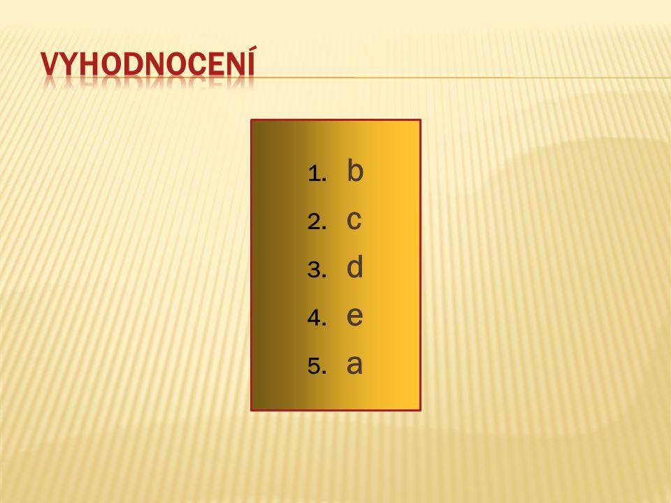 Vyhodnocení b c d e a