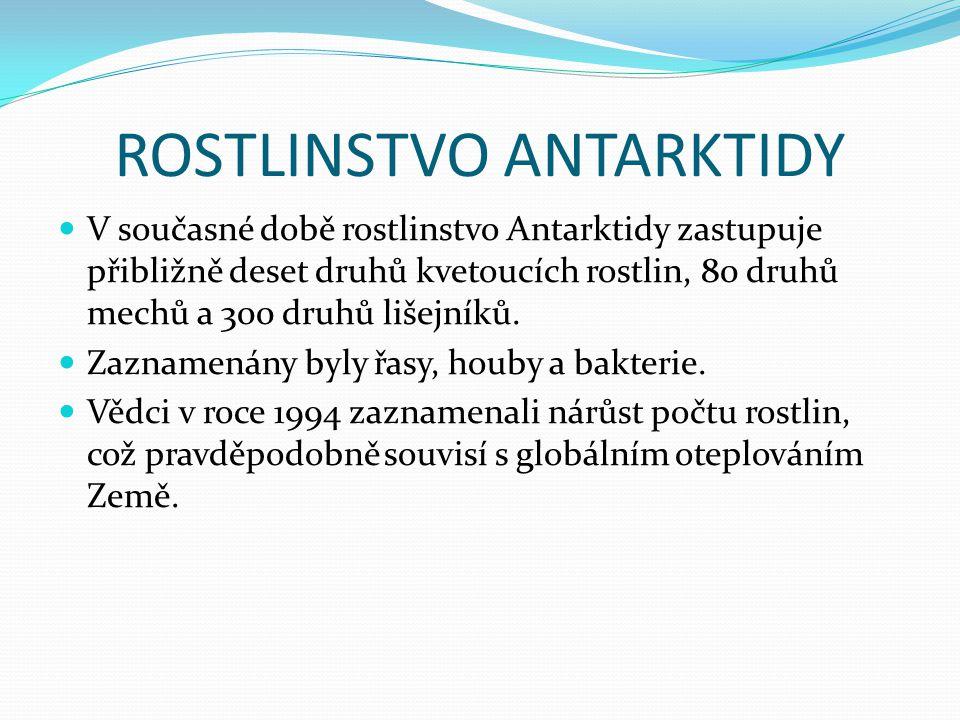 ROSTLINSTVO ANTARKTIDY