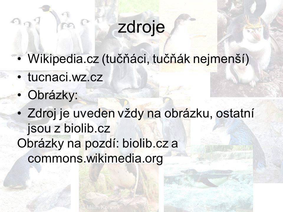 zdroje Wikipedia.cz (tučňáci, tučňák nejmenší) tucnaci.wz.cz Obrázky: