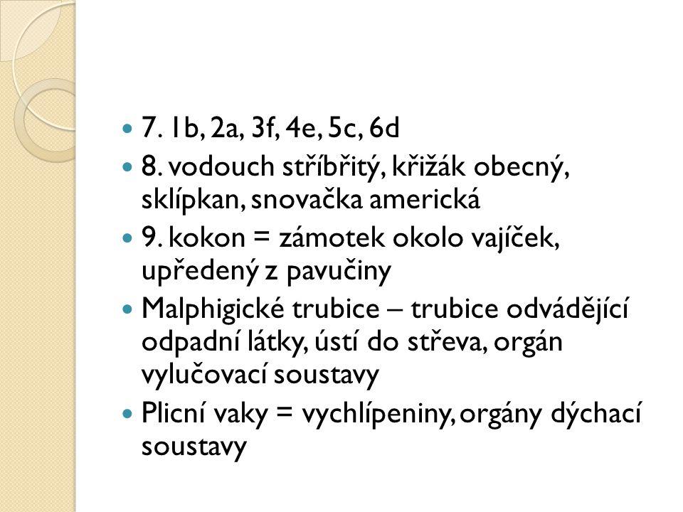 7. 1b, 2a, 3f, 4e, 5c, 6d 8. vodouch stříbřitý, křižák obecný, sklípkan, snovačka americká. 9. kokon = zámotek okolo vajíček, upředený z pavučiny.