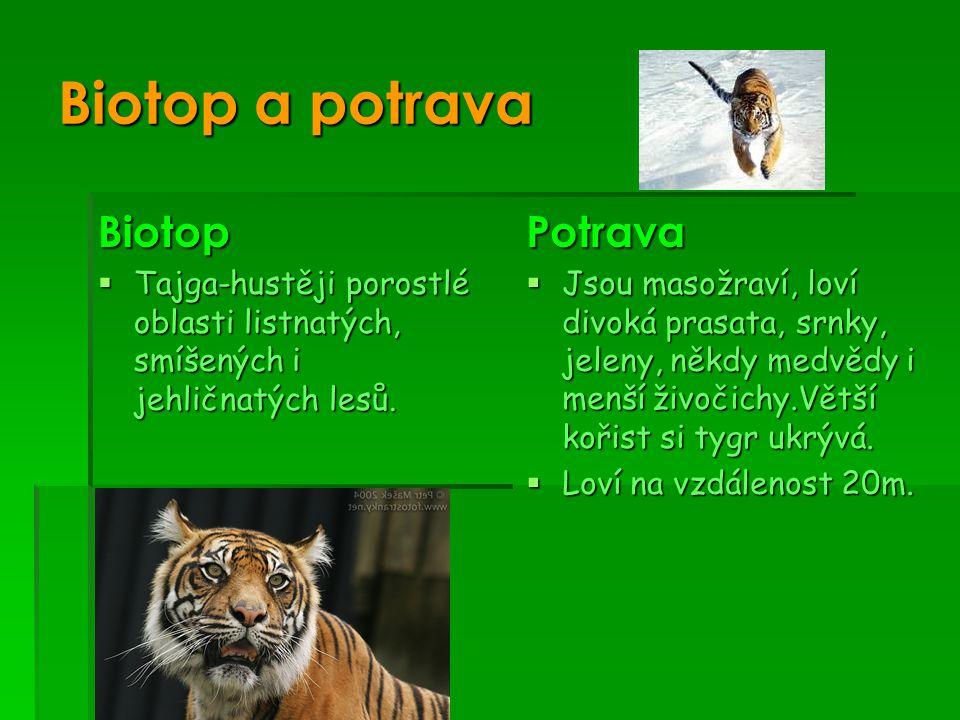 Biotop a potrava Biotop Potrava