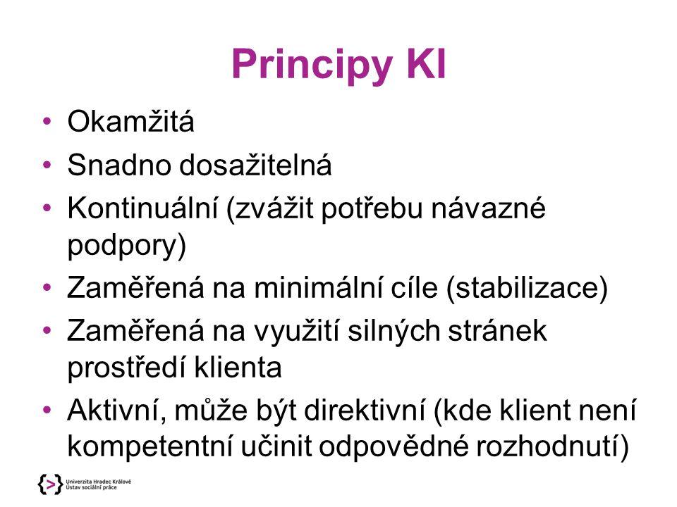 Principy KI Okamžitá Snadno dosažitelná