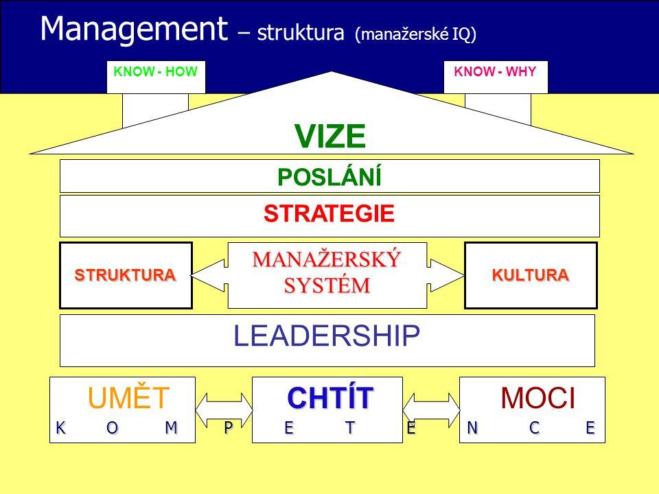 Management – struktura (manažerské IQ)