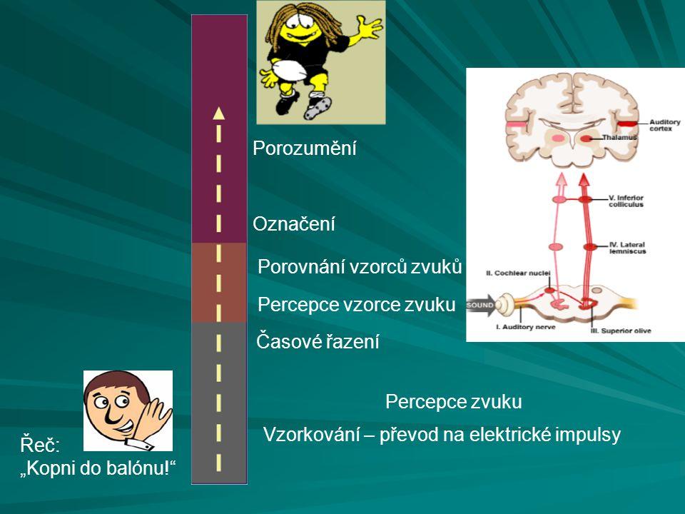 Porozumění Označení. Porovnání vzorců zvuků. Percepce vzorce zvuku. Časové řazení. Percepce zvuku.