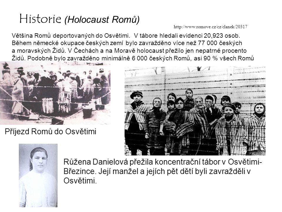 Historie (Holocaust Romů)