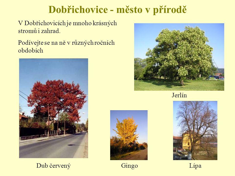 Dobřichovice - město v přírodě