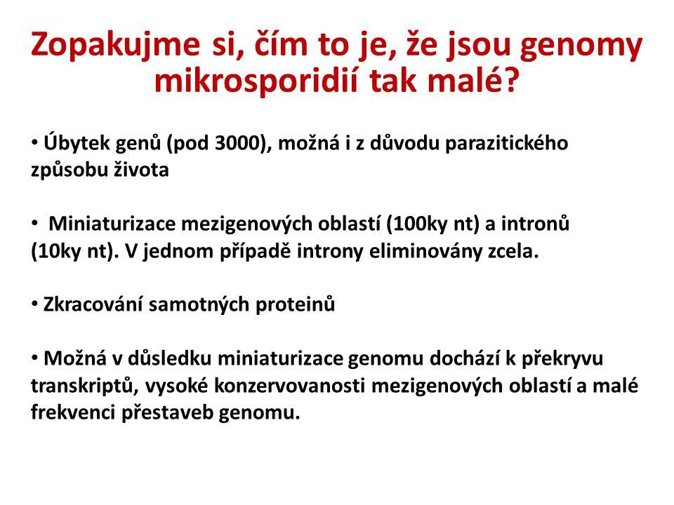 Zopakujme si, čím to je, že jsou genomy mikrosporidií tak malé