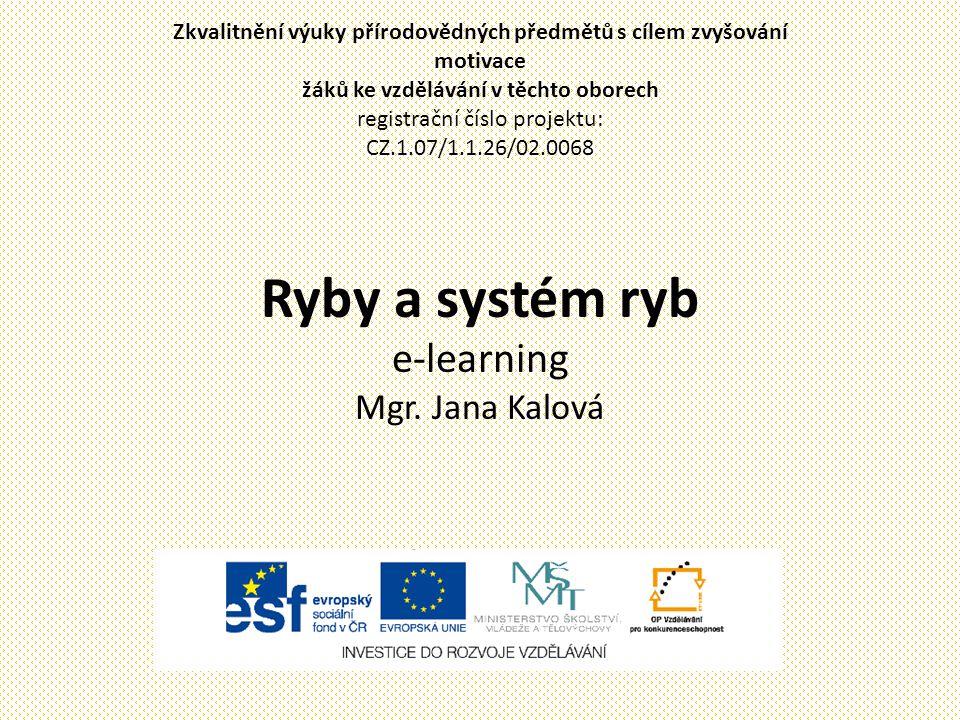 Ryby a systém ryb e-learning Mgr. Jana Kalová