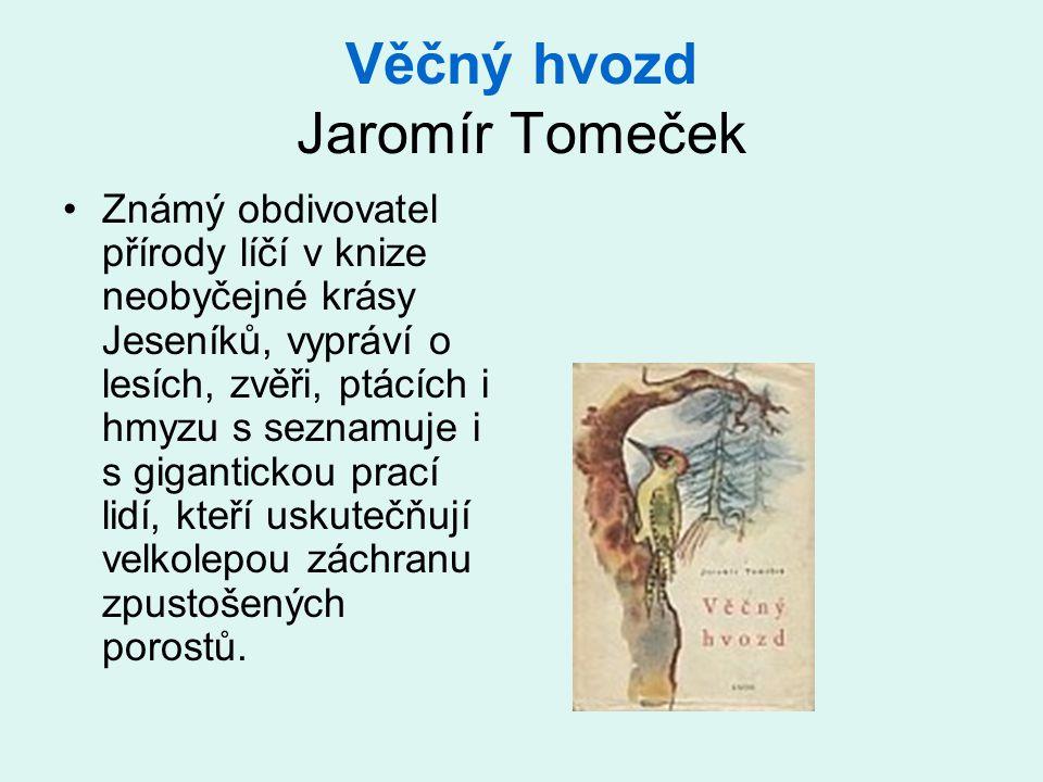 Věčný hvozd Jaromír Tomeček