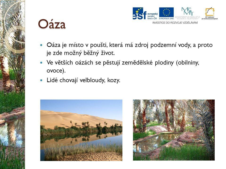 Oáza Oáza je místo v poušti, která má zdroj podzemní vody, a proto je zde možný běžný život.