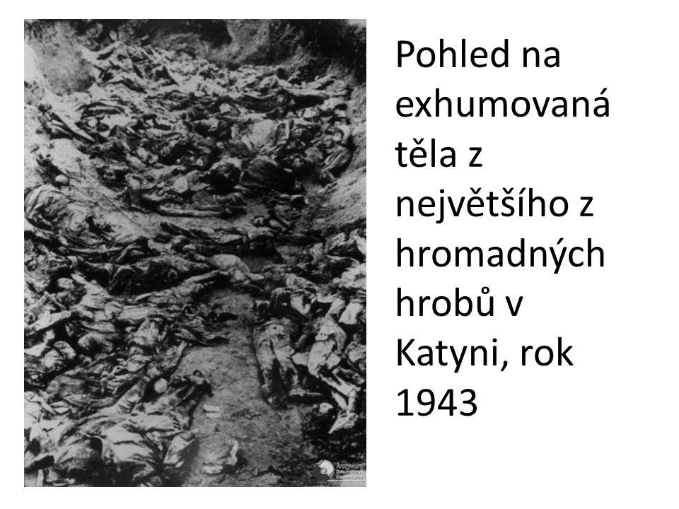 Pohled na exhumovaná těla z největšího z hromadných hrobů v Katyni, rok 1943