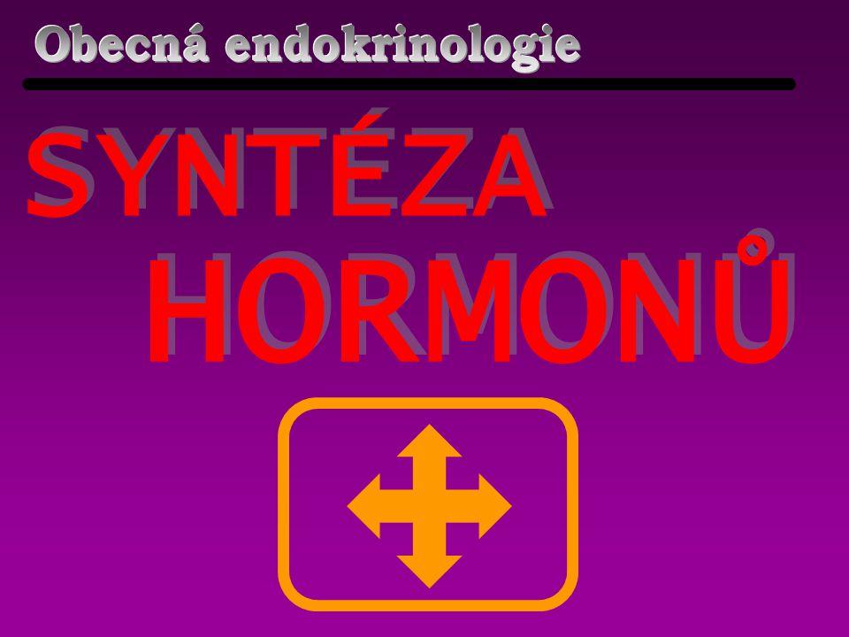 Obecná endokrinologie