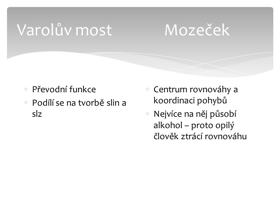 Varolův most Mozeček Převodní funkce Podílí se na tvorbě slin a slz