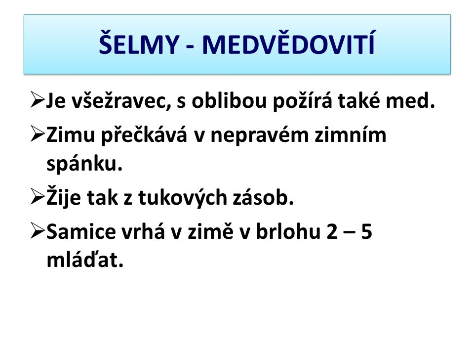 ŠELMY - MEDVĚDOVITÍ Je všežravec, s oblibou požírá také med.