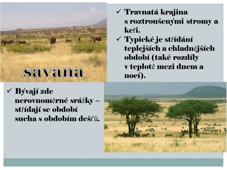 savana Travnatá krajina s roztroušenými stromy a keři.