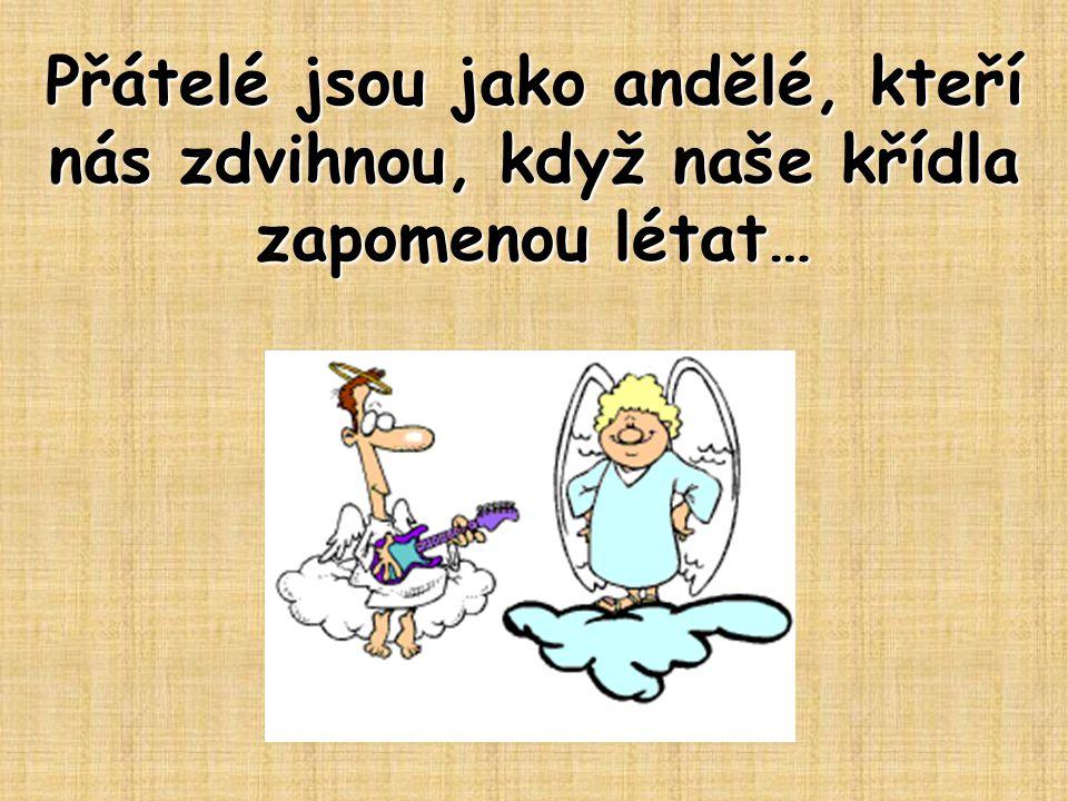 Přátelé jsou jako andělé, kteří nás zdvihnou, když naše křídla zapomenou létat…