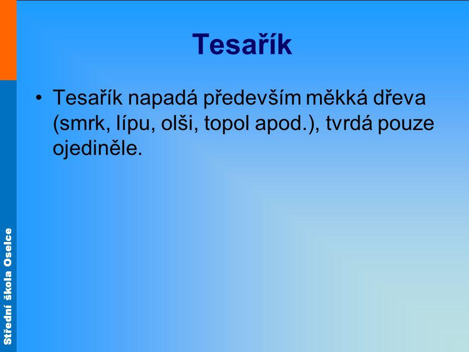 Tesařík Tesařík napadá především měkká dřeva (smrk, lípu, olši, topol apod.), tvrdá pouze ojediněle.