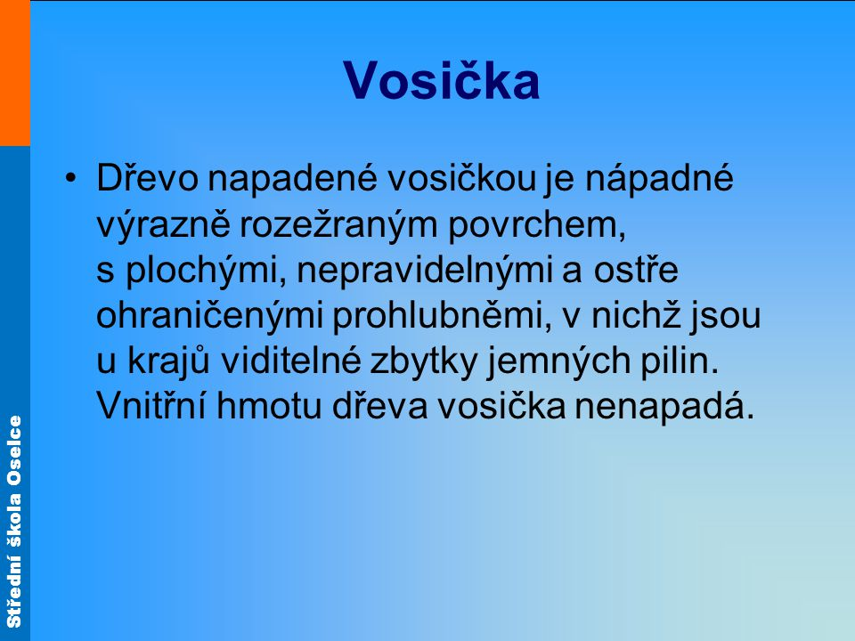 Vosička