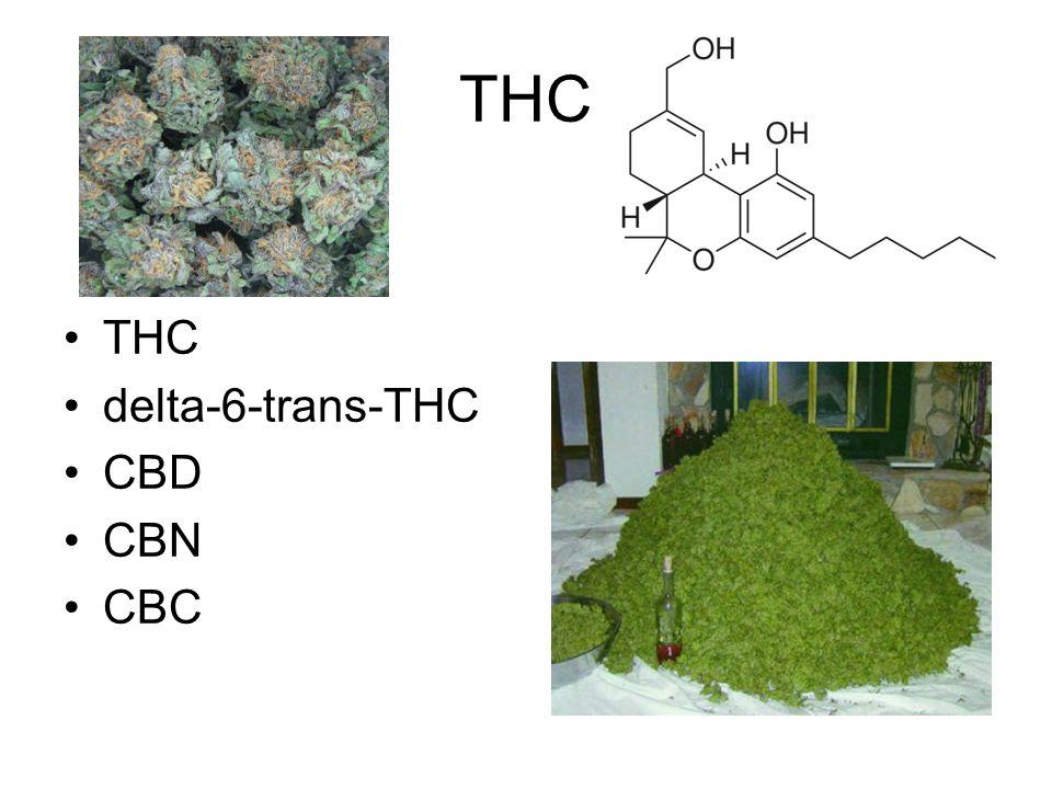 THC THC delta-6-trans-THC CBD CBN CBC