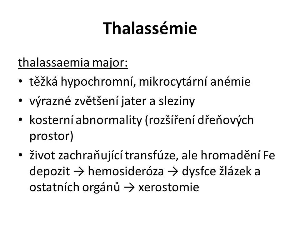 Thalassémie thalassaemia major: těžká hypochromní, mikrocytární anémie