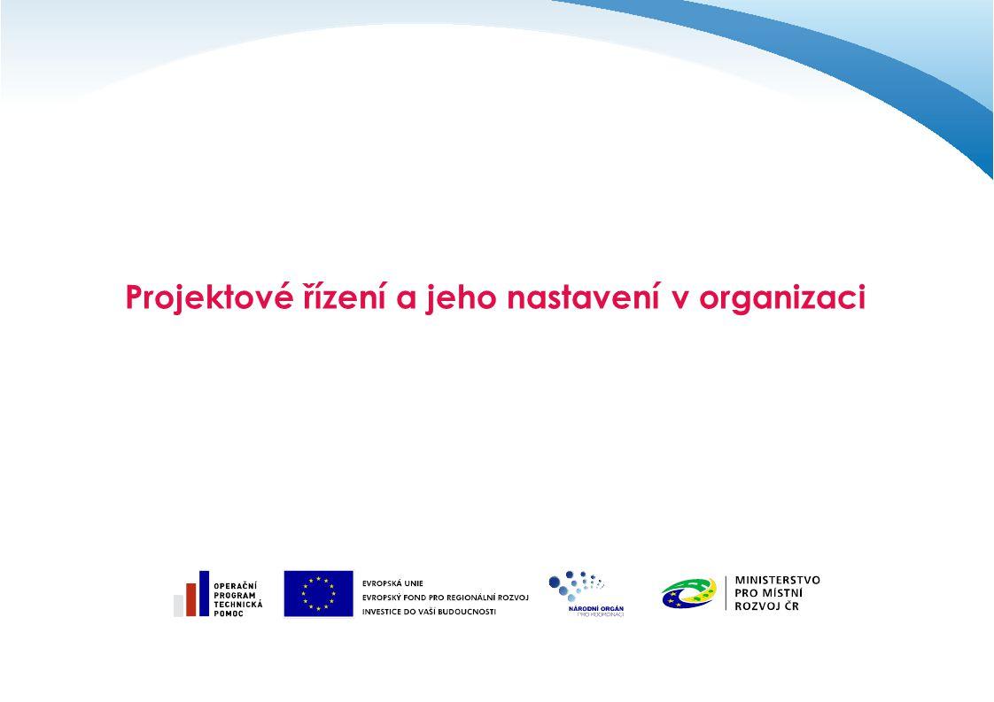 Projektové řízení a jeho nastavení v organizaci
