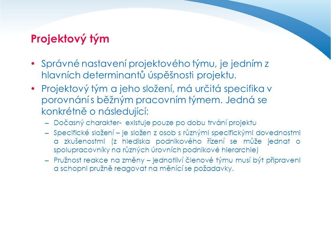 Projektový tým Správné nastavení projektového týmu, je jedním z hlavních determinantů úspěšnosti projektu.