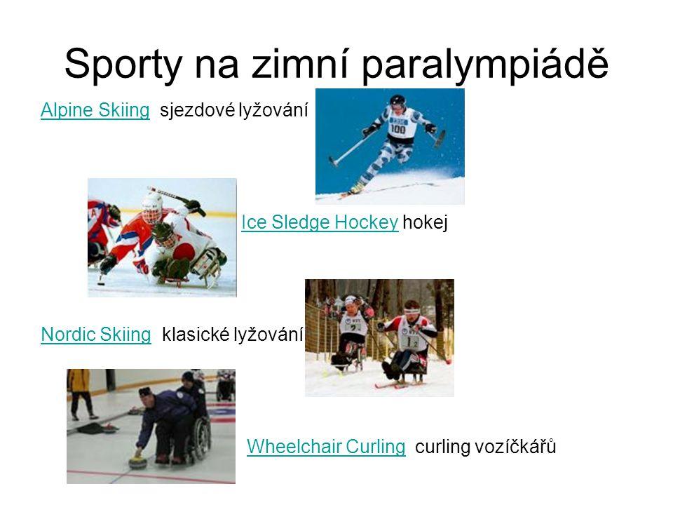 Sporty na zimní paralympiádě