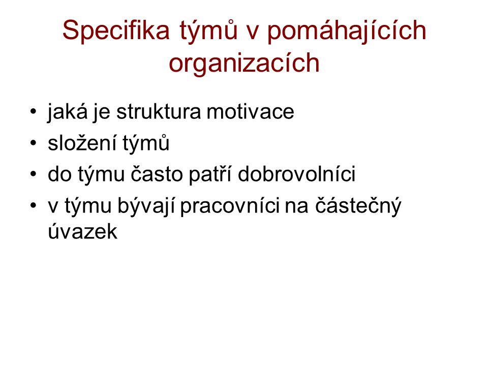 Specifika týmů v pomáhajících organizacích