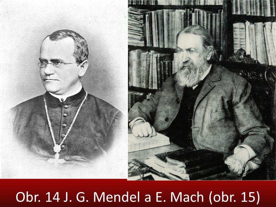 Obr. 14 J. G. Mendel a E. Mach (obr. 15)