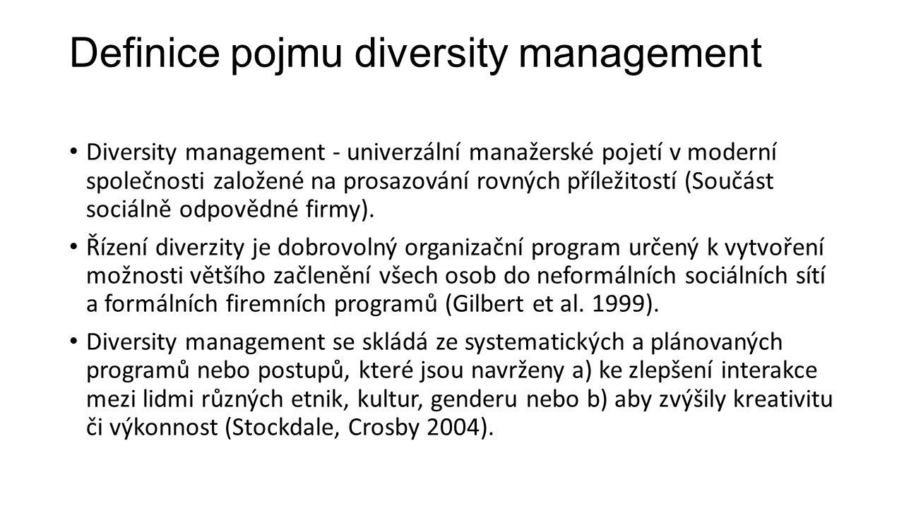 Definice pojmu diversity management