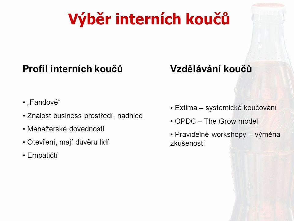 Výběr interních koučů Profil interních koučů Vzdělávání koučů