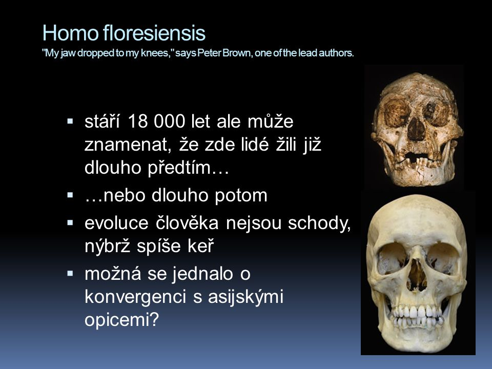 Homo floresiensis My jaw dropped to my knees, says Peter Brown, one of the lead authors.