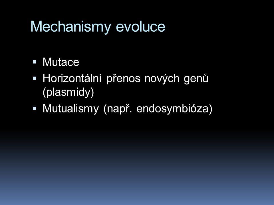 Mechanismy evoluce Mutace Horizontální přenos nových genů (plasmidy)