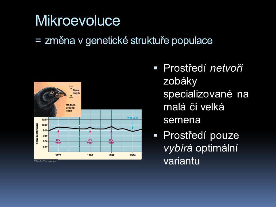 Mikroevoluce = změna v genetické struktuře populace