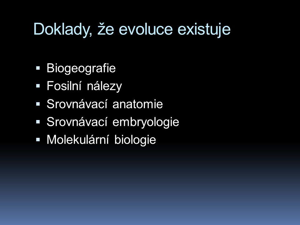 Doklady, že evoluce existuje