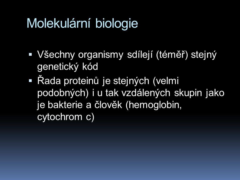 Molekulární biologie Všechny organismy sdílejí (téměř) stejný genetický kód.