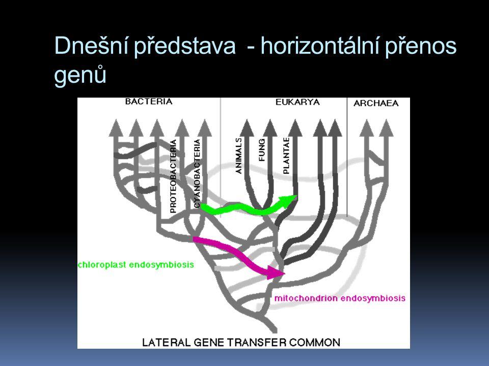 Dnešní představa - horizontální přenos genů