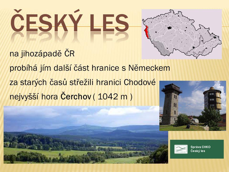 ČESKÝ LES na jihozápadě ČR probíhá jím další část hranice s Německem