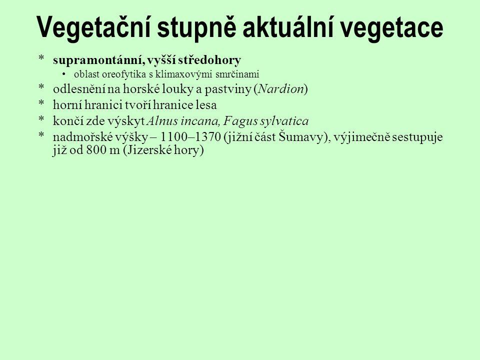 Vegetační stupně aktuální vegetace