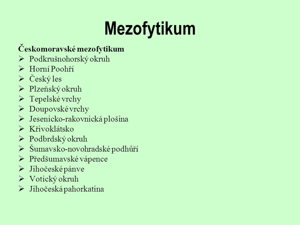 Mezofytikum Českomoravské mezofytikum Podkrušnohorský okruh