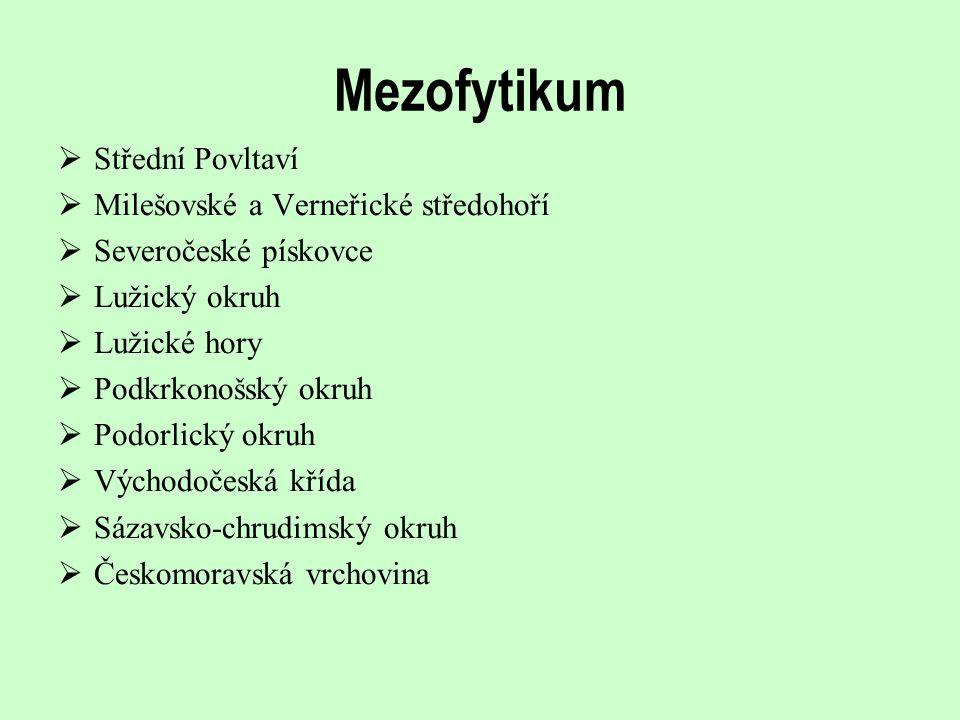 Mezofytikum Střední Povltaví Milešovské a Verneřické středohoří