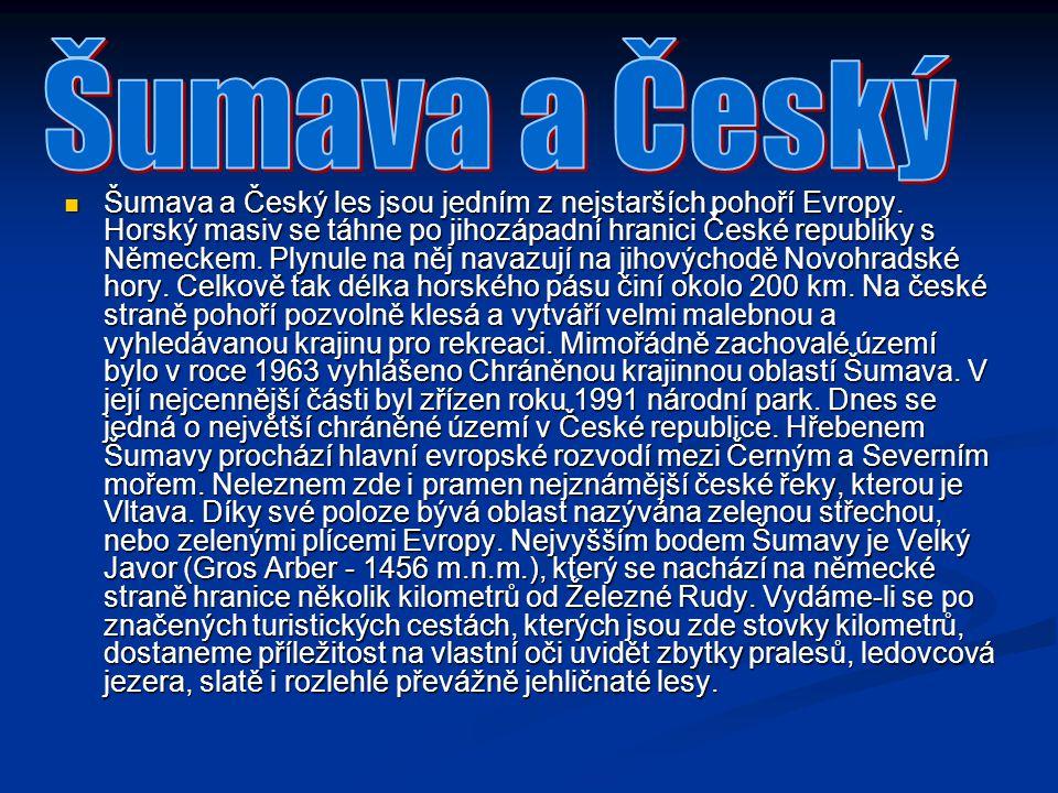 Šumava a Český