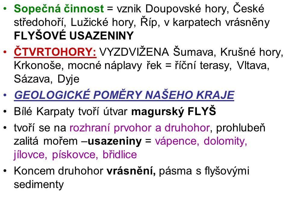 Sopečná činnost = vznik Doupovské hory, České středohoří, Lužické hory, Říp, v karpatech vrásněny FLYŠOVÉ USAZENINY