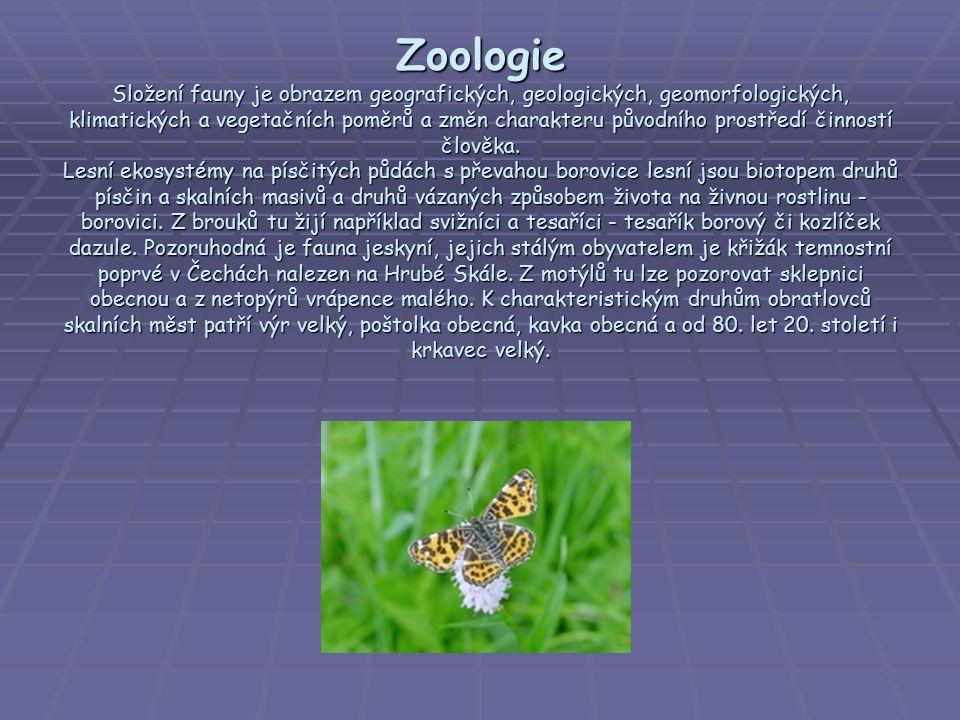 Zoologie Složení fauny je obrazem geografických, geologických, geomorfologických, klimatických a vegetačních poměrů a změn charakteru původního prostředí činností člověka.