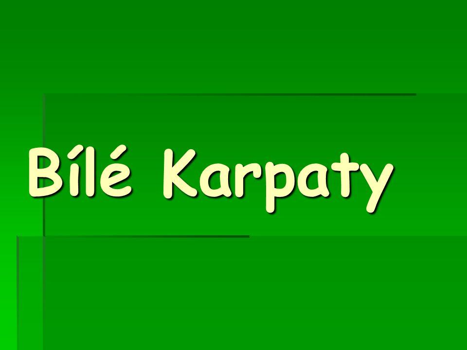 Bílé Karpaty