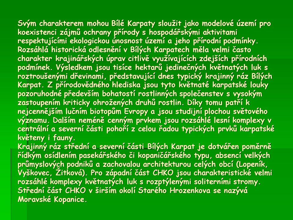 Svým charakterem mohou Bílé Karpaty sloužit jako modelové území pro koexistenci zájmů ochrany přírody s hospodářskými aktivitami respektujícími ekologickou únosnost území a jeho přírodní podmínky.