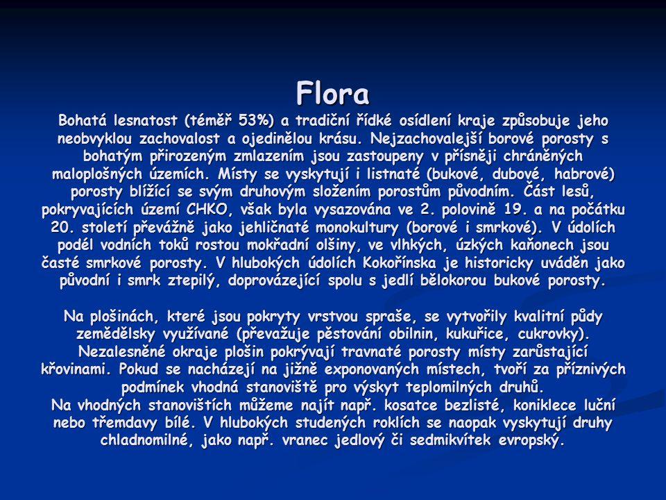 Flora Bohatá lesnatost (téměř 53%) a tradiční řídké osídlení kraje způsobuje jeho neobvyklou zachovalost a ojedinělou krásu.