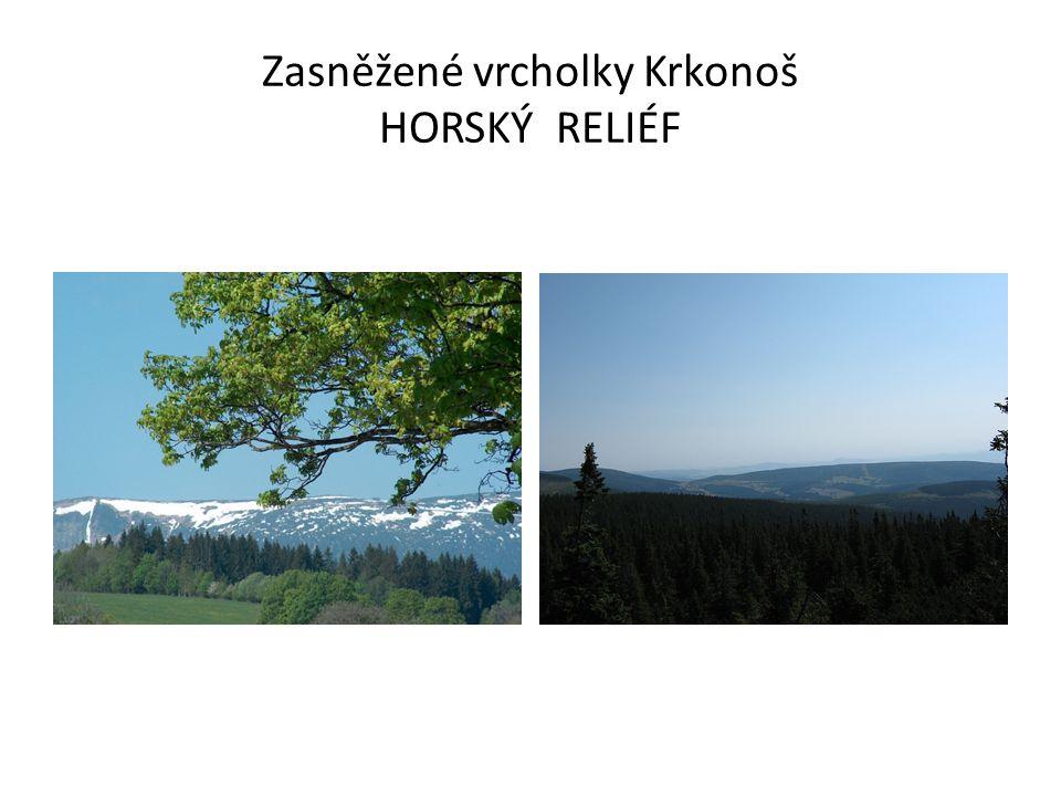 Zasněžené vrcholky Krkonoš HORSKÝ RELIÉF