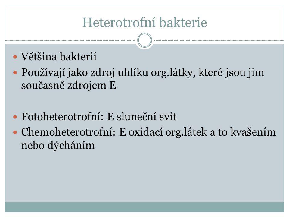 Heterotrofní bakterie